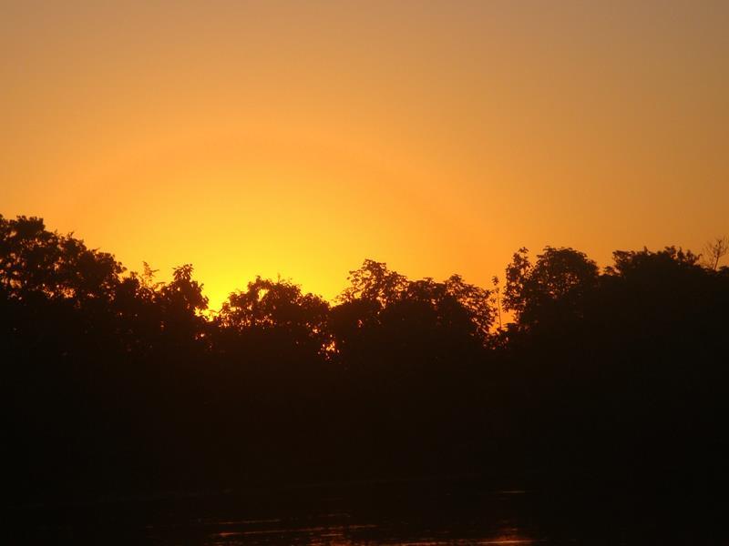 o-que-fazer-no-pantanal-pordosol